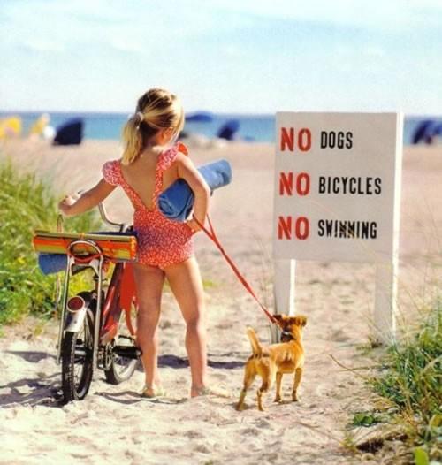 No dogs, no bicycles, no swimming